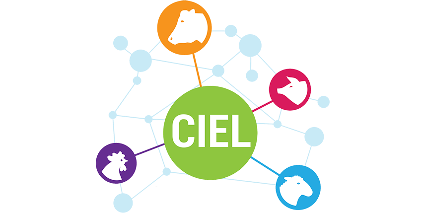 CIEL (Centre for Innovation Excellence in Livestock)