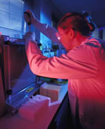 Researcher in University laboratory