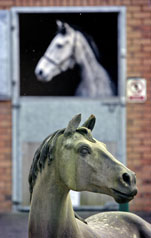 A grey horse in the background looks left; a horse statue in the foreground looks right