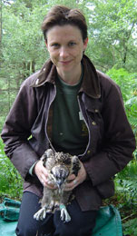 Anna Meredith of the exotic animal service restraining an osprey