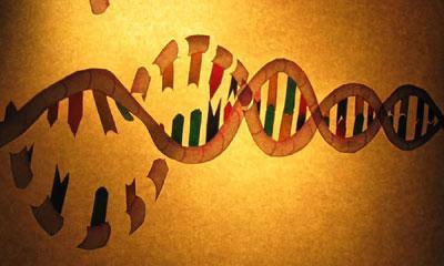 Still from Stem Cell Revolution, illustration by Cameron Duguid
