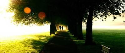 Joggers in the meadows
