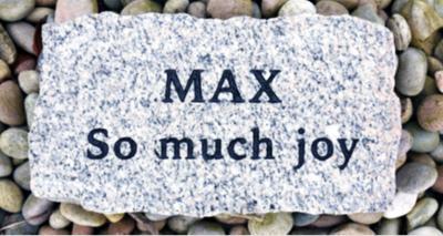 Max stone