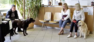 Two women sit in a waiting room with a labrador while a man sits across from them with a black dog