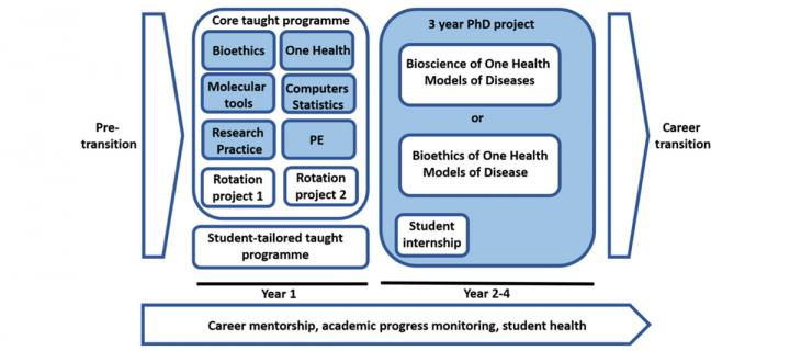 Training structure for One Health Models of Disease PhD programme