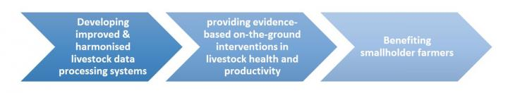 Developing improved & harmonised livestock data processing systems > Providing evidence-based on-the-ground interventions in livestock health and productivity > Benefiting smallholder farmers