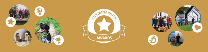 Sustainability Awards 2019-20 online celebration montage of photos from projects