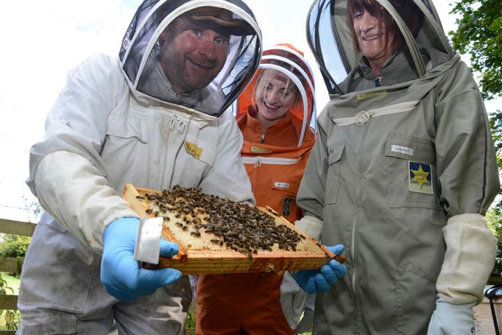 A man in a bee suit shows visitors in bee suits some honey bees