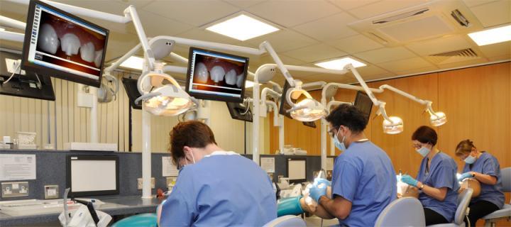 Dental students at work