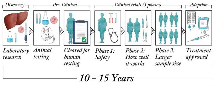 Image showing drug development process from lab to clinic.