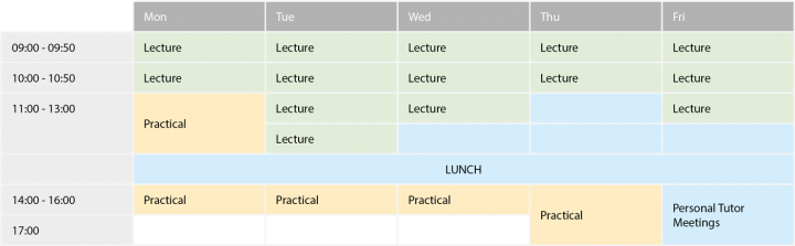 Example of a year 1 timetable