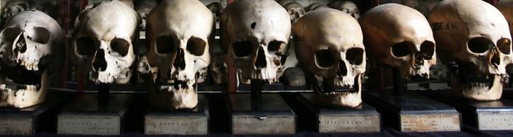Close up image of seven skulls from the Canary Islands