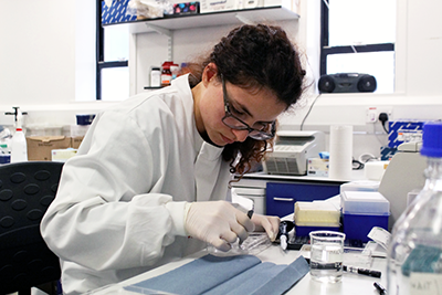 Working in a lab at the Hugh Robson Building (Bronze labs sustainability award winner 2016)