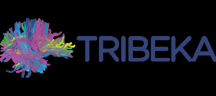 TriBEKa Consortium logo