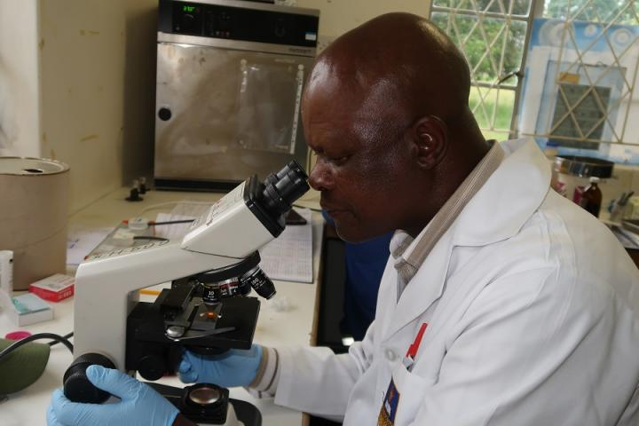 Testing for Schistosomiasis