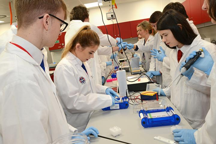Pupils get hands on with real scientific equipment and learn about genome editing