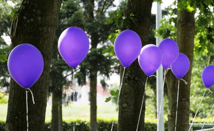 A row of purple balloons, floating in front of trees in the background.