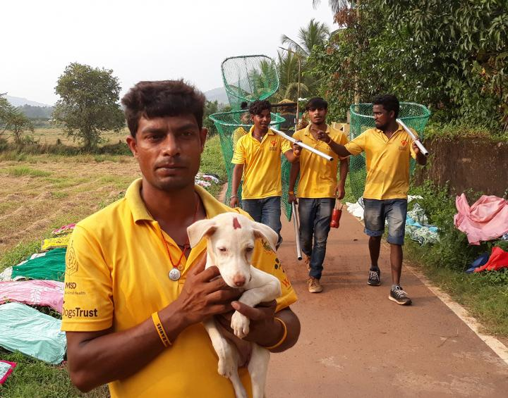 The team who collects street dogs.