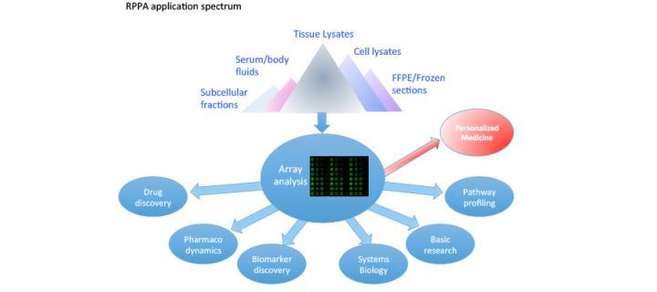 RPPA application spectrum