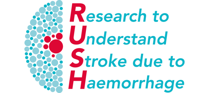 RUSH programme logo