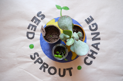 Seed sprout change