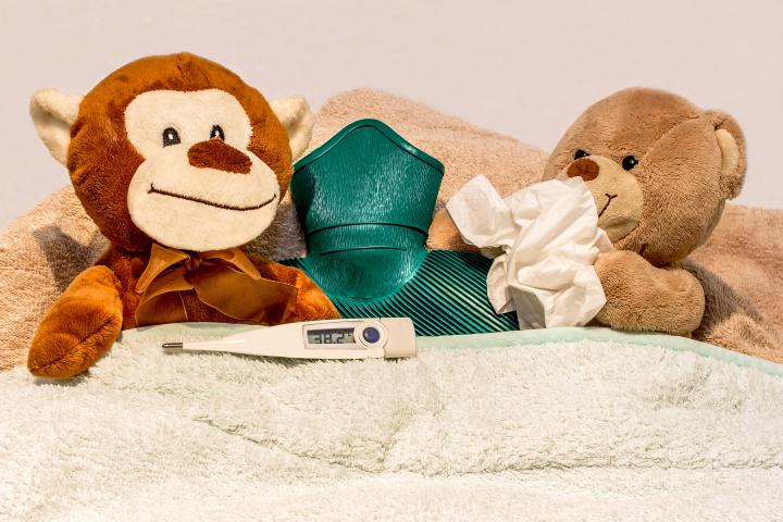 Two teddies in bed with tissues and hot water bottle