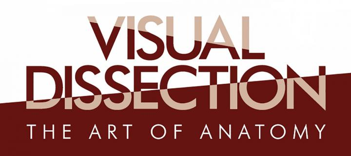 Logo for Visual Dissection exhibition