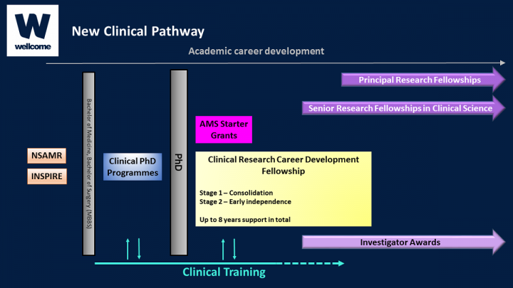 Diagram showing Wellcome Trust new clinical pathway