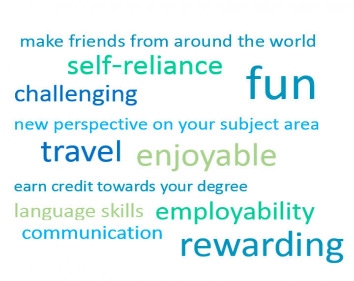 Wordcloud of reasons to go abroad