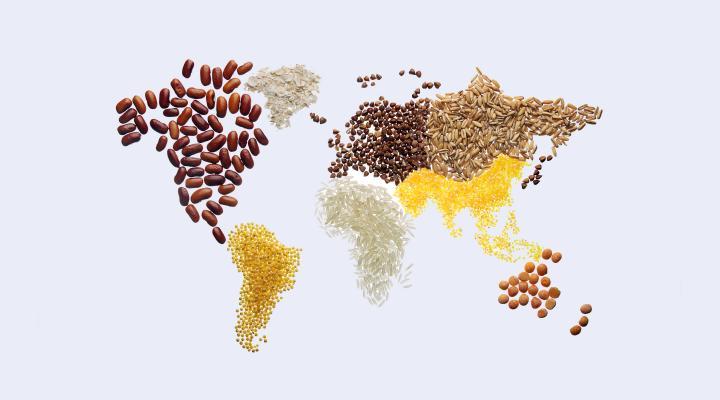 Food world map
