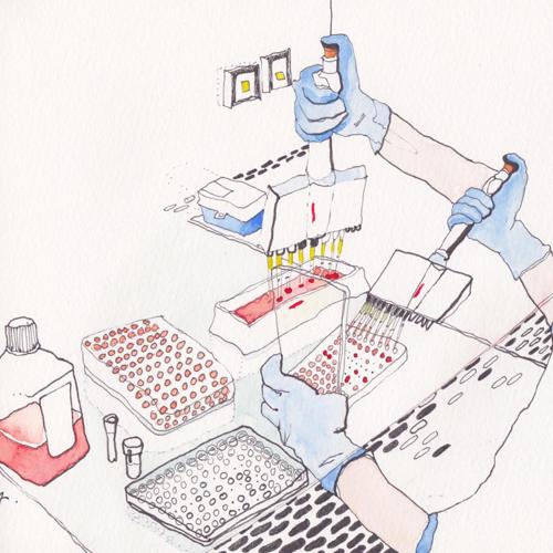 illustrated lab