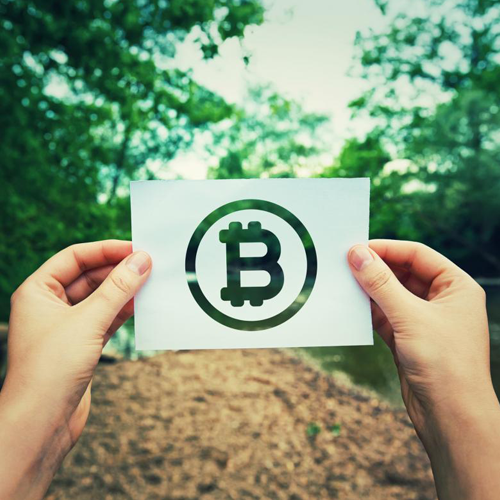 Bitcoin symbol on paper, held up in woods