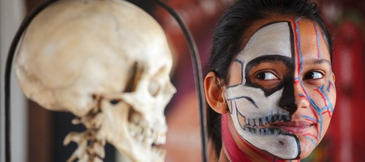 A girl's painted face next to a skull shows the anatomy of the human skull