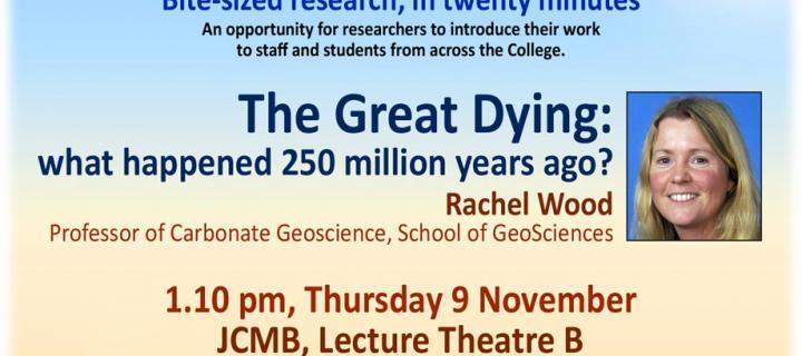 Rachel Wood Academics Unplugged Flyer