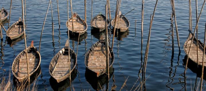 Bangladeshi boats on water