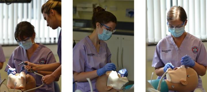 3 separate images of dental students working with practice dummies
