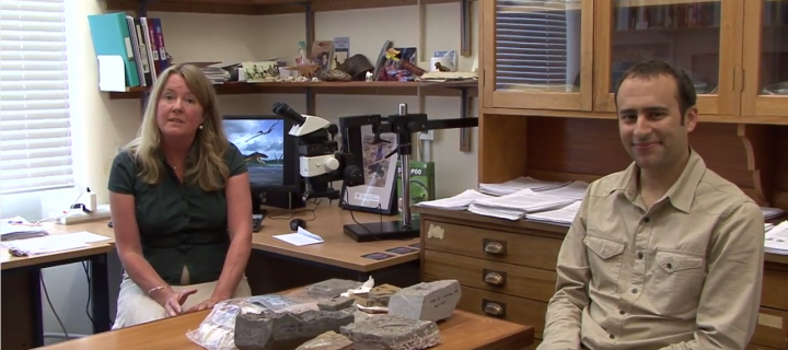 Palaeontology and Geobiology video screen grab