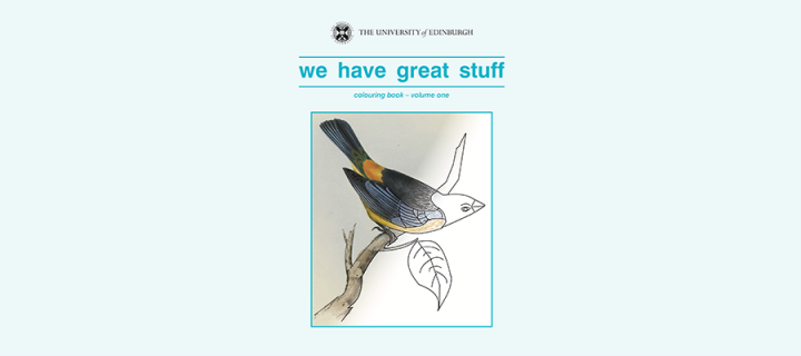'We have great stuff' front cover featuring an illustration of a bird being coloured in with pencils