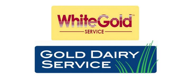 White Gold and Gold Dairy Service logos
