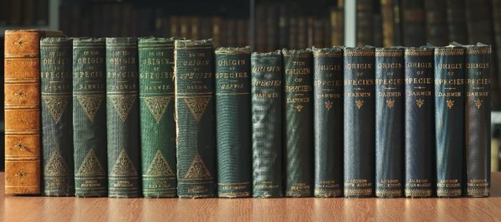 Darwin books