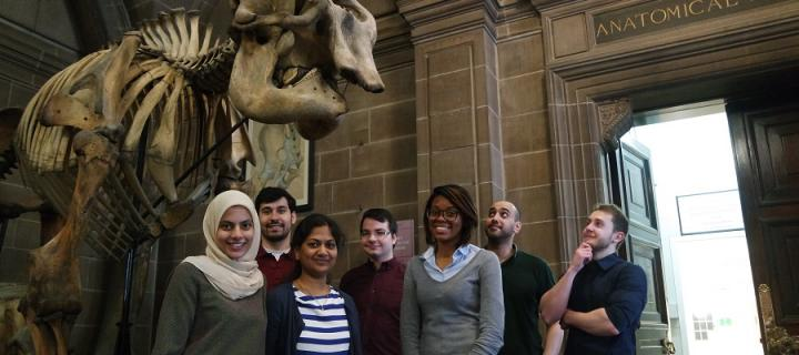 Biomedical students stand by the elephant skeletons
