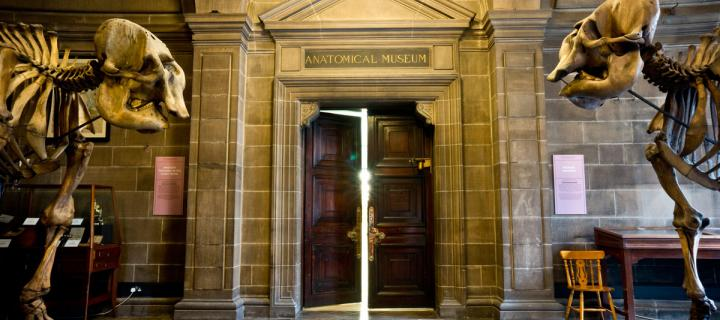 entrance to the Anatomical Museum
