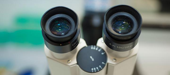 Cancer Research UK Edinburgh Centre: microscope