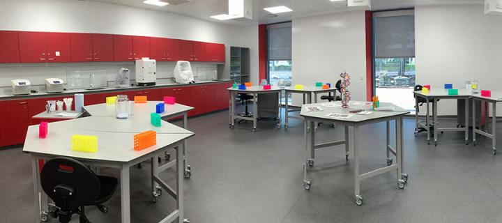 An empty laboratory in the Easter Bush Science Outreach Centre.