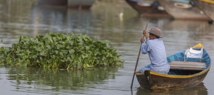 Man punting a boat by mass of vegetation