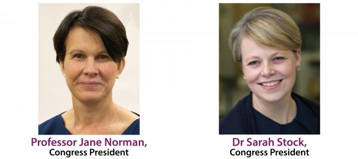 ESPBC Congress Presidents Norman and Stock panel