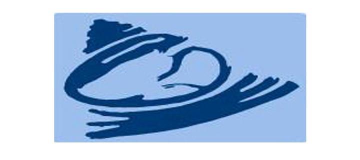Focused Intensive Care Echo (FICE) Course logo