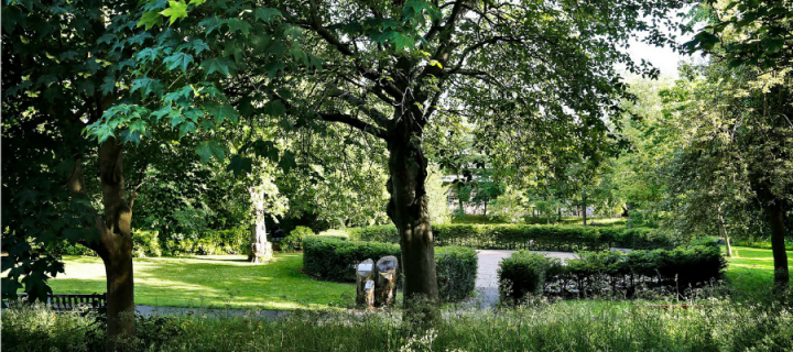 George Square Gardens