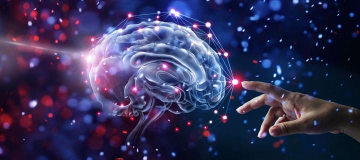 Mysteries of the human brain to be uncovered
