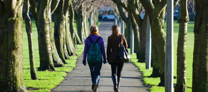 Students walking a walkway in The Meadows